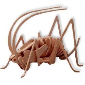 3D bouwpakket van een houten krekel. Gemaakt van FSC hout.