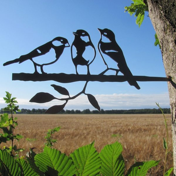 Koolmees trio van Birdwise