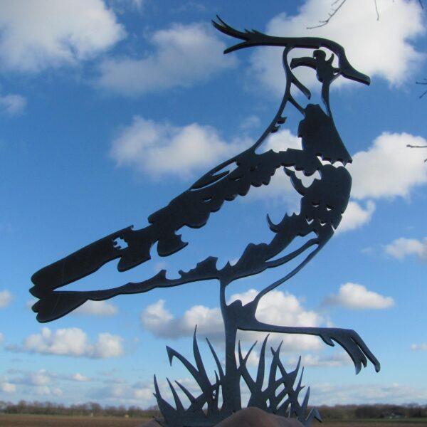 Birdwise Kieviet