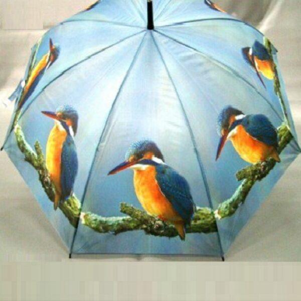 IJsvogel paraplu