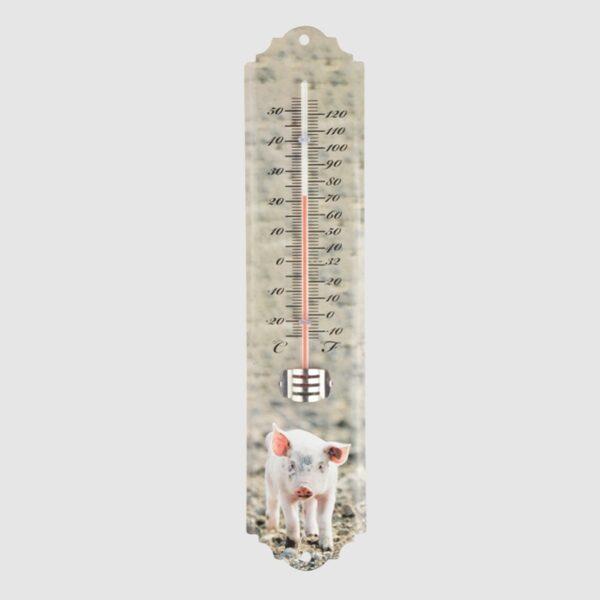 Thermometer varken